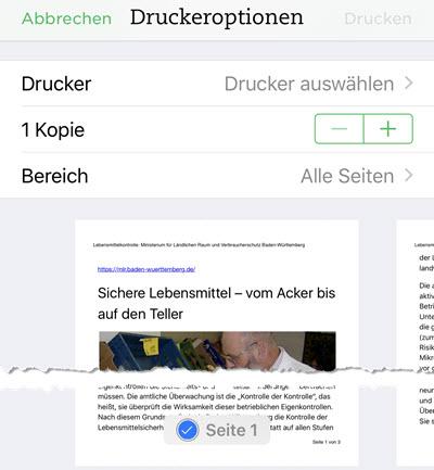 pdf-drucker2